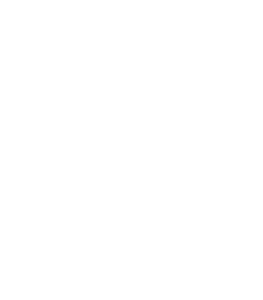 Logo Game Only